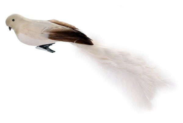 ShiShi BIRD w/ CLIP, 45cm cream oistrich tail