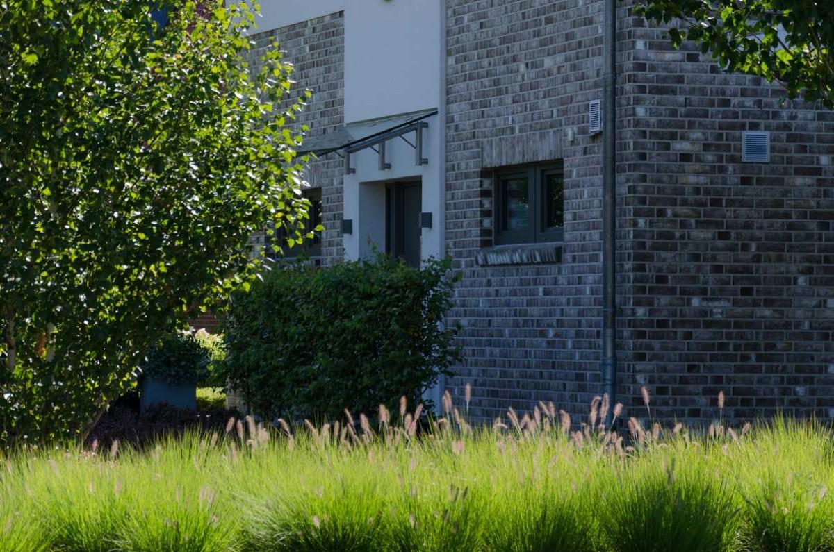birke im garten meine grne wiese birke in beton garten viebrock garten von ehren pflanzen. Black Bedroom Furniture Sets. Home Design Ideas